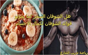 فوائد الشوفان لكمال الأجسام لتضخيم العضلات