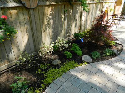 Cabbagetown garden makeover after  Paul Jung Gardening Services Toronto