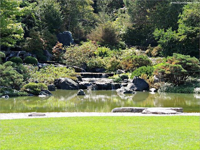 Jardín Japonés del Jardín Botánico de Montreal: Lago y Cascada