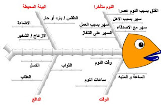 نموذج عظمة السمكة دكتور عبد الرحيم محمد استشاري التخطيط الاستراتيجي وقياس الأداء المؤسسي