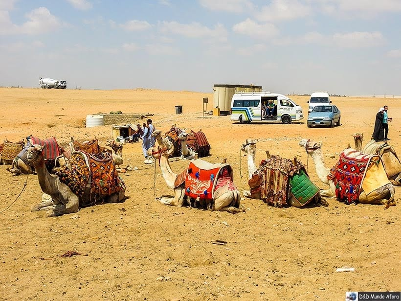 Passeio de dromedário em frente às pirâmides de Gizé - Diário de Bordo: 2 dias no Cairo