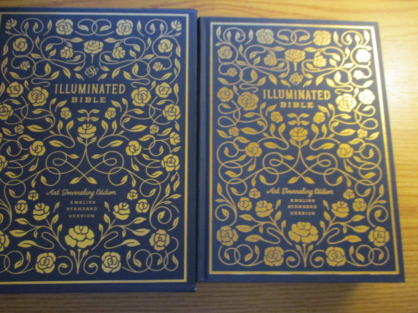 Missys Product Reviews : ESV Illuminated Bible Review