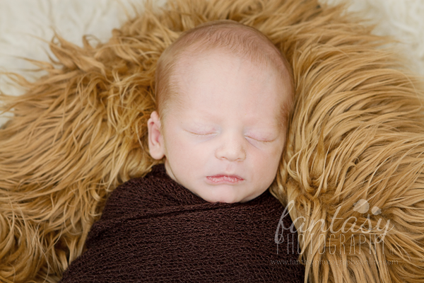 newborn photographers in winston salem nc | triad newborn photography