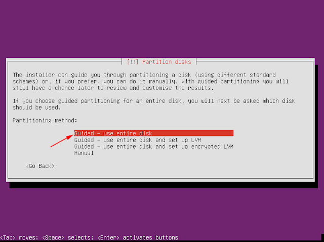 guided use entire disk ubuntu server