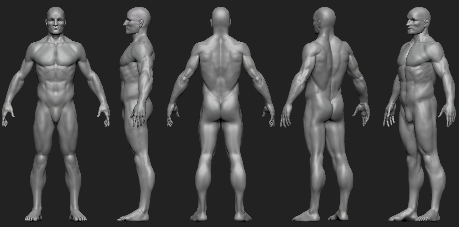 Good To Be Back Male Anatomy Sculpt To Warm Up 3dtotal Forums