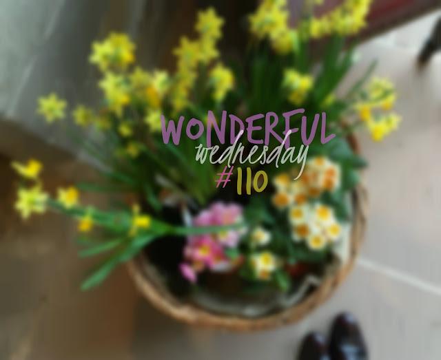 Wonderful Wednesday #110