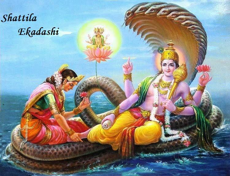 Shattila Ekadashi