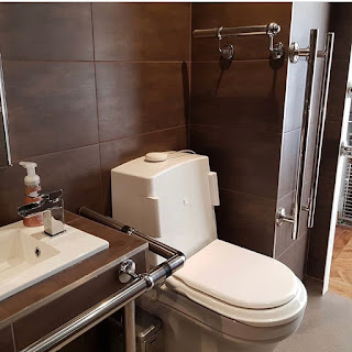 Toilet with elbow flush buttons and sink with chrome rails