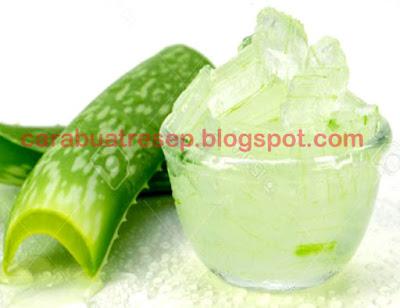 Foto Resep Manisan Lidah Buaya Kering/Basah (Nata De Aloe Vera) Sederhana Spesial Lembut, Empuk dan Kenyal Asli Enak