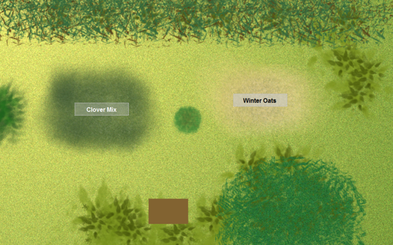 Food Plot Graphic - Handicapped Outdoors