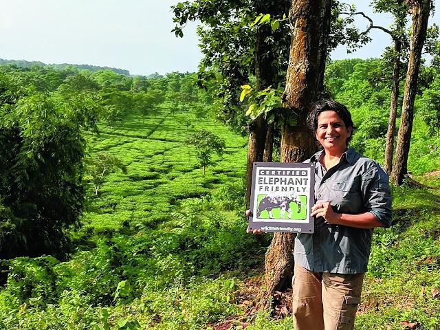 Sonia Jabbar, director of Nuxalbari tea estate in Darjeeling
