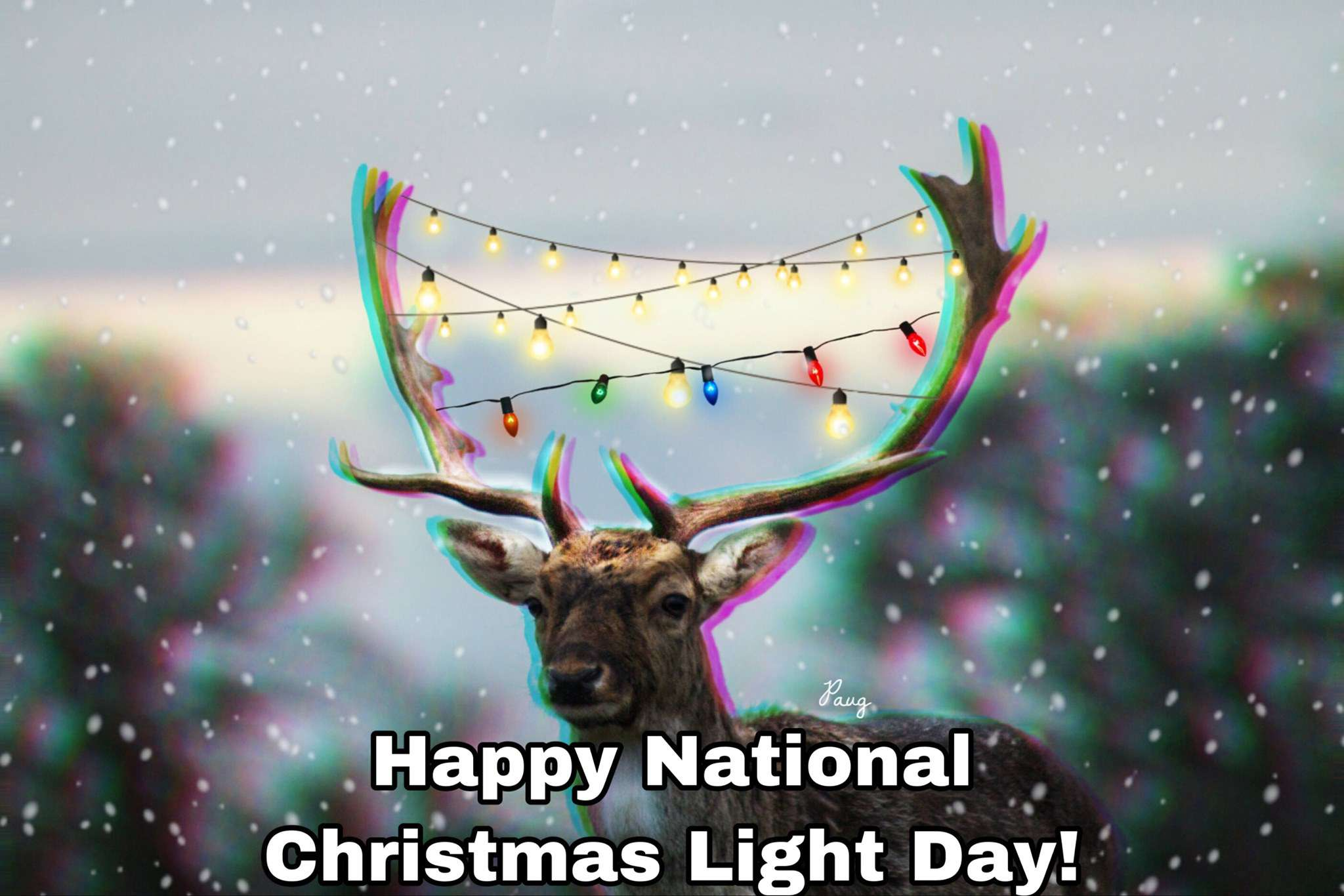 National Christmas Lights Day Wishes Images download