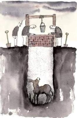 burro-caido-pozo
