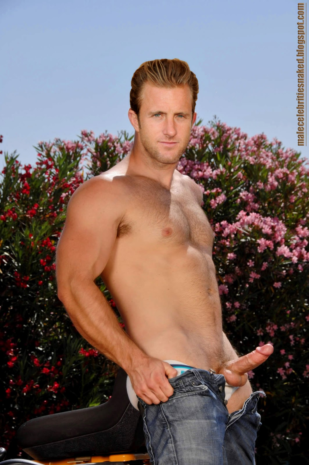 Theme, Naked scott caan fake nudes