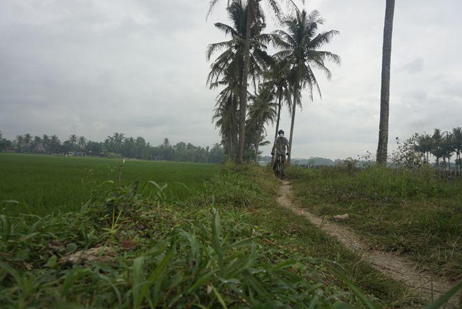 Jalan setapak tidak jauh dari Stasiun Rewulu