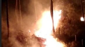 Semalam, Dua Hektar Hutan di Mapongka Mengkendek, Habis Terbakar