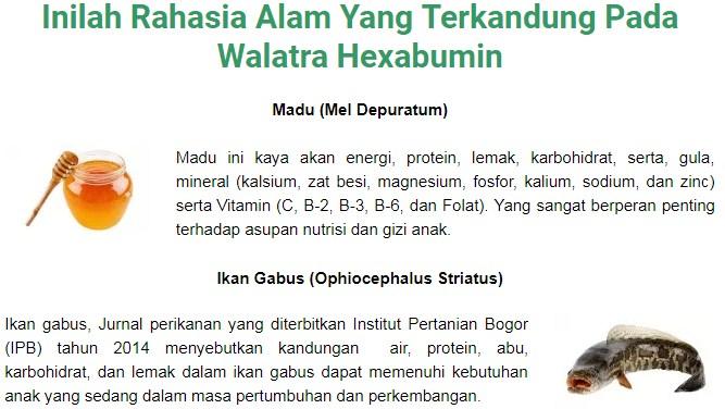 Walatra Hexabumin Solusi Terbaik Untuk Nafsu Makan Si Kecil