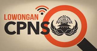 Berkas Kelengkapan Dokumen Calon Pelamar CPNS Menurut Humas BKN