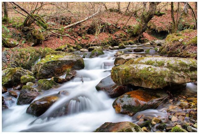 Rio Alba, Asturias