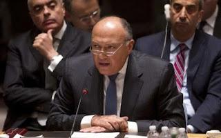 شكري: العقوبات سوف تحد من السلام في جنوب السودان
