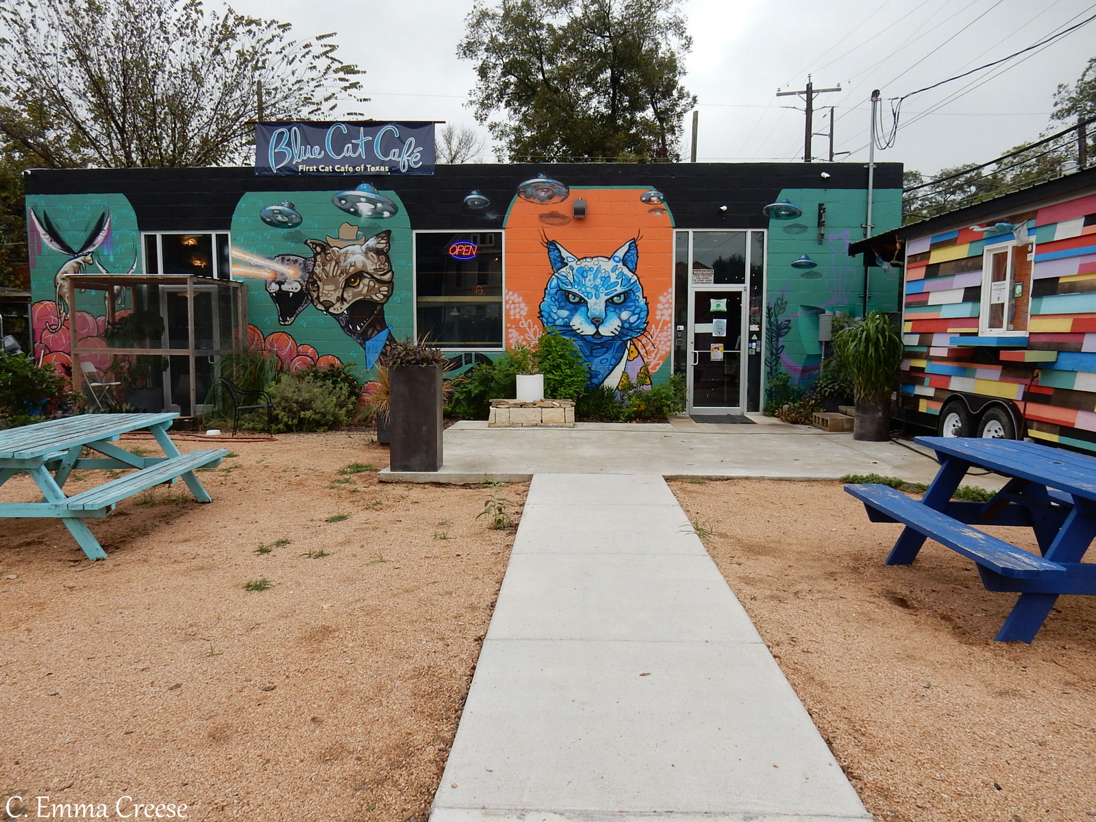 Blue Cat Cafe - 9 of our favourite things to do in Austin, Texas Adventures of a London Kiwi