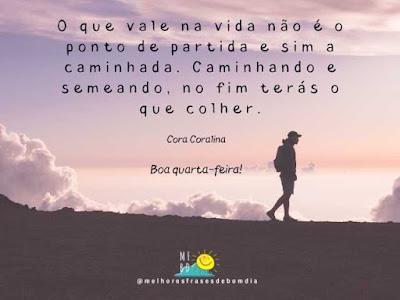 Frases de quarta-feira - Cora Coralina
