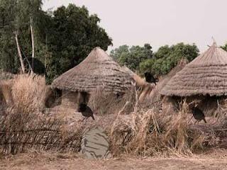 Juego Andaman Tribe Island Escape Solución
