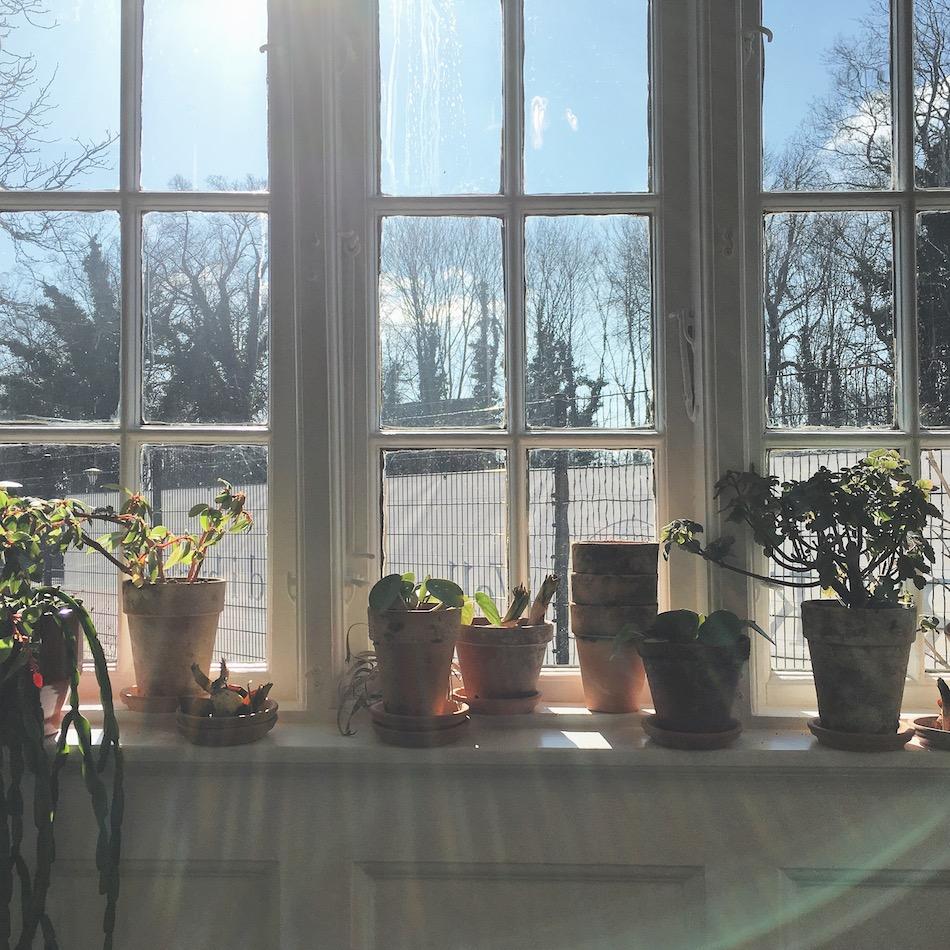 Vindueskarm, windowsill, sillfie, anya jensen photography, hygge