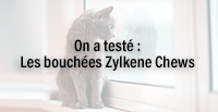 On a testé : Les bouchées Zylkene Chews