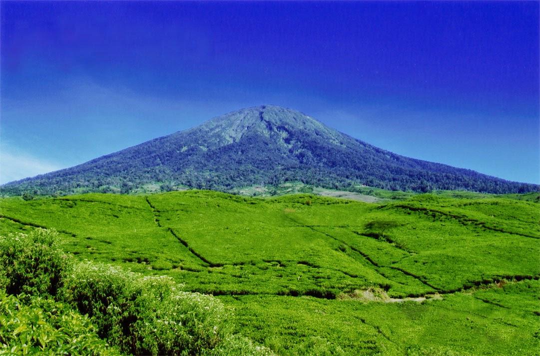 Pesona Yang Ditawarkan Oleh Gunung Dempo