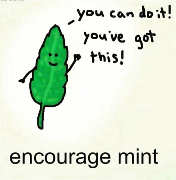 Encourage Mint - you can do it! you've got this!