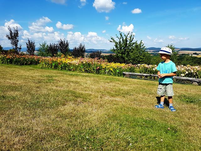Rodzinne atrakcje na Dolnym Śląsku - Arboretum w Wojsławicach - podróże z dzieckiem.