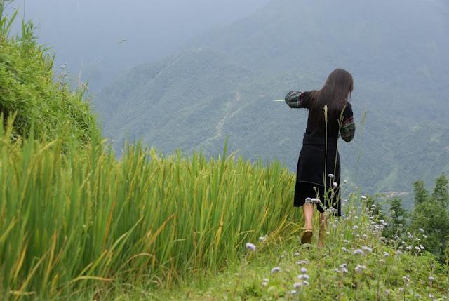 Family trekking in Sapa, Vietnam