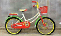 City Bike Erminio 506 20 Inci