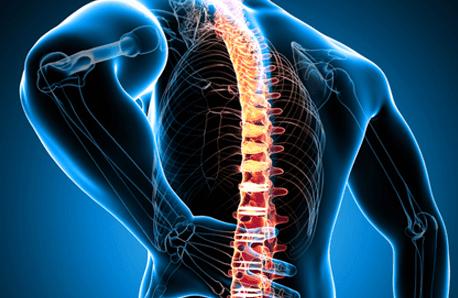 tulang belakang sering sakit, chiropractic, alat terapi tulang belakang murah, cara terapi tulang belakang, terapi tulang belakang chiropractic, terapi chiropractic, perawatan tulang belakang, tulang belakang anak, terapi tulang leher, tanda tanda sakit tulang belakang, sakit tulang belakang pinggang, sakit tulang belakang bagian bawah, sakit tulang belakang atas, sakit tulang belakang bengkok, sakit tulang belakang bawah, gejala sakit tulang belakang