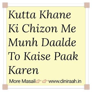 Kutta Khane Ki Chizon Me Munh Daalde To Kaise Paak Karen