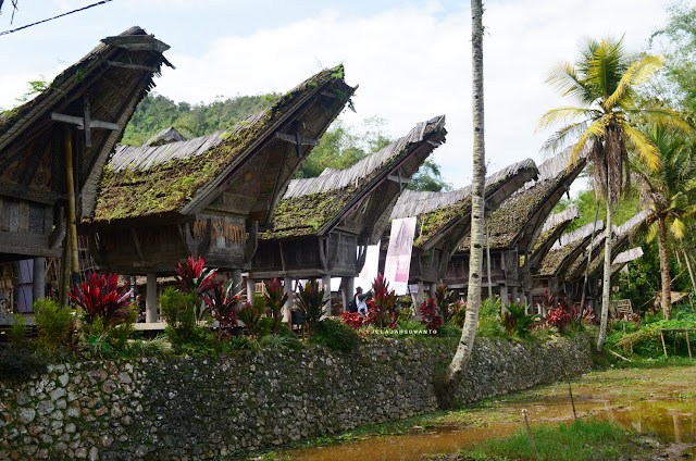 deretan tongkonan di Kete Kesu Tana Toraja Sulsel +Fotojelajahsuwanto