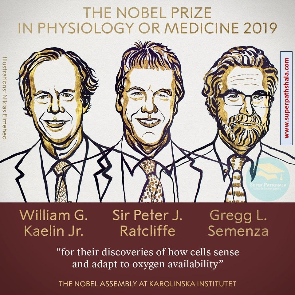 चिकित्सा का नोबेल पुरस्कार 2019
