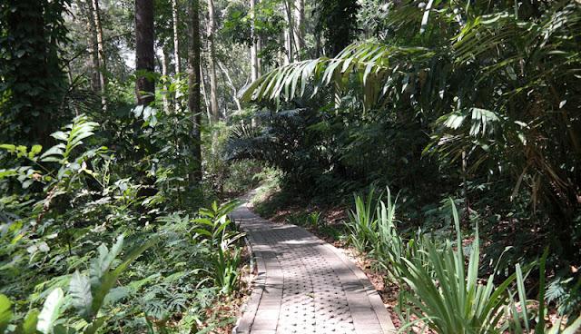 Taman Hutan Raya Sultan Syarif Hasyim