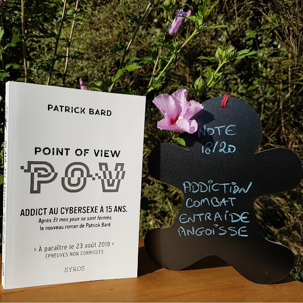 POV : Point of view de Patrick Bard