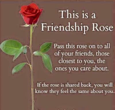 rose wallpaper hd free download