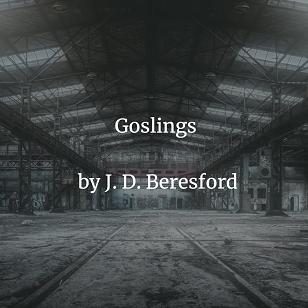 Goslings by J. D. Beresford