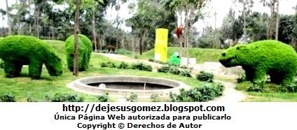 Fotos de Hipopótamos (Arte Topiario). Foto de hipopótamos por Jesus Gómez