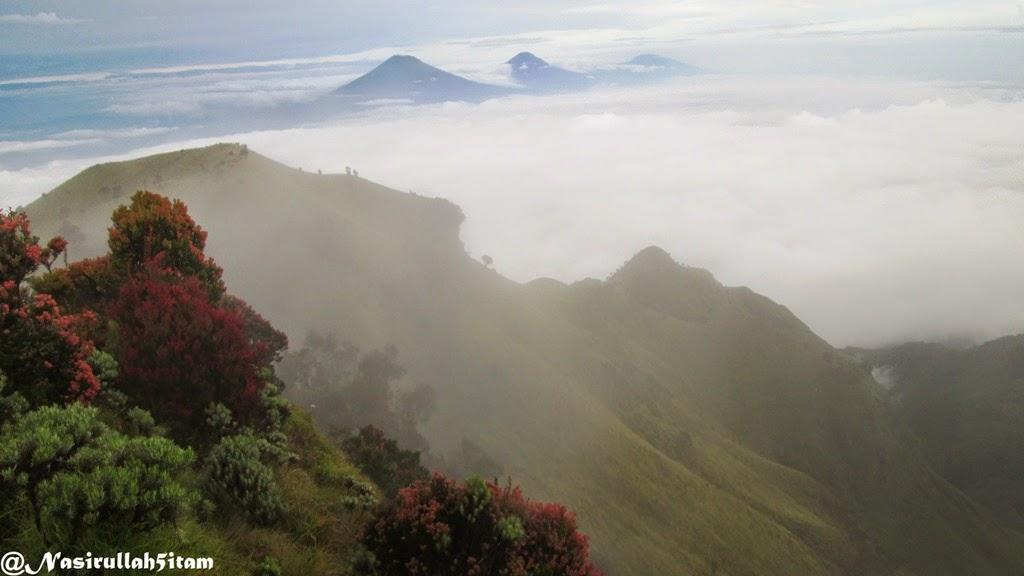 Pemandangan gunung Sindoro, Sumbing, dan Prau berjejeran