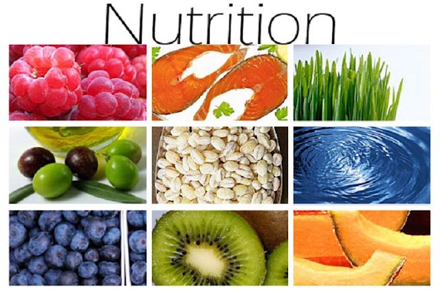 بحث عن الغذاء والتغذية الصحية