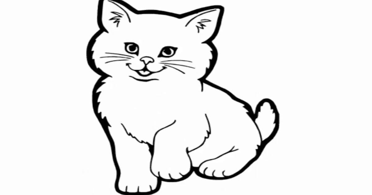 96 Gambar Mewarnai Binatang Kucing Hd Terbaik Gambar Hewan