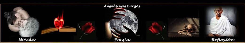 Poesia, reflexiones y novelas