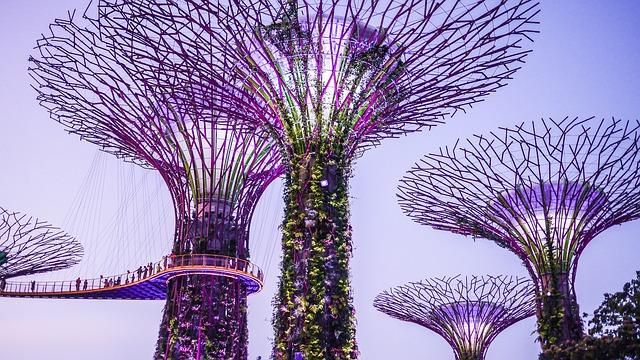 Gardens by The Bay, Singapore, hotel di singapore yang dekat dengan tempat wisata 2020, objek wisata yang paling terkenal di singapura adalah brainly 2020, daftar wisata singapore 2020, tempat wisata romantis di singapore 2020, tempat wisata di malaysia 2020, tempat wisata sekitar little india singapore 2020, gambar kota singapura 2020, paket wisata singapore 2020, pemandangan singapore 2020