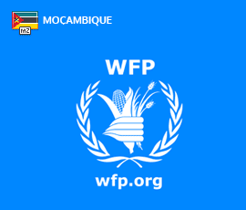Recrutamento World Food Programme Moçambique