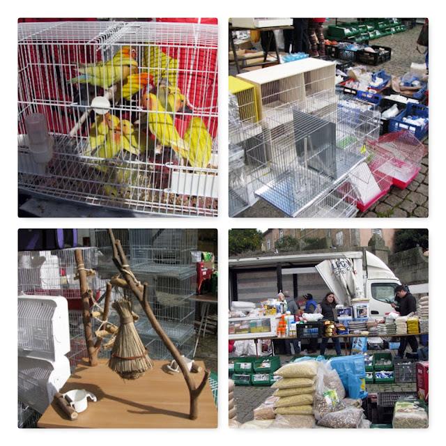 produtos a venda na Feira dos Passarinhos do Porto